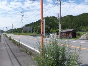 国道42号 粟皇子神社への林道の入口付近