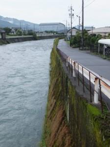 中川橋から望む中川の右岸下流側