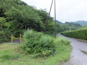 玄工山憩いの広場への歩道(左)と八鬼山道登り口への林道
