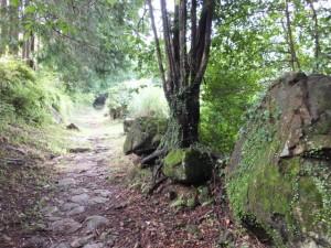 九鬼山道登り口から行き倒れ巡礼供養碑へ