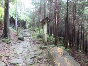 行き倒れ巡礼供養碑付近(熊野古道 八鬼山道)