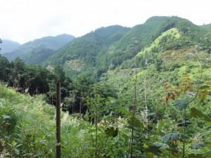 行き倒れ巡礼供養碑から八鬼山「石畳道」説明板への途中の眺望