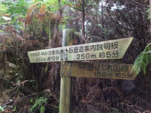 「熊野古道・林道(交差点) 350m 約10分、石畳道案内説明板 250m 約5分」の道標