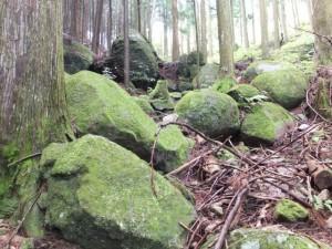 蓮華石・烏帽子石から九木峠へ(八鬼山道)