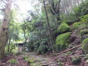 九木峠から荒神堂へ(八鬼山道)