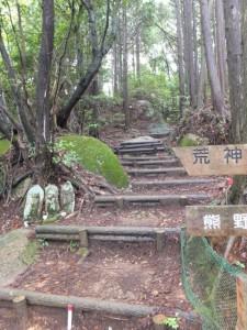 八鬼山山頂からさくらの森広場へ(八鬼山道 江戸道)