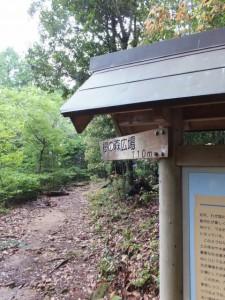 「桜の森広場 110m」の道標