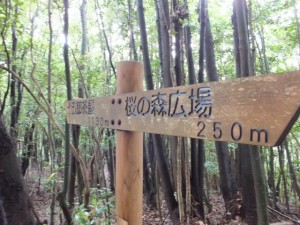 「十五郎茶屋 1,130m 、桜の森広場 250m」の道標