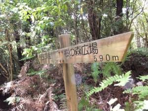 「十五郎茶屋 790m 、桜の森広場 590m」の道標