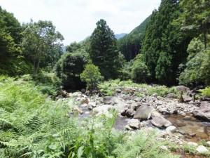 「八鬼山山頂 2,710m、名柄一里塚 390m」の道標付近から望む沓川