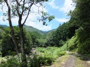 八鬼山峠道三木里登り口から名柄一里塚への途中で振り向いて