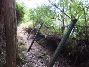 山道に突き刺さる落石防護柵の杭(ヨコネ道)