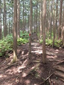絶景の丘展望所の案内板とそのルート(三木峠)