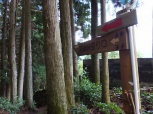 「羽後峠登り口」の道標