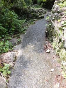 「しんこんばし」の先の滑りやすいコンクリート舗装の坂道(熊野古道 羽後峠へ)