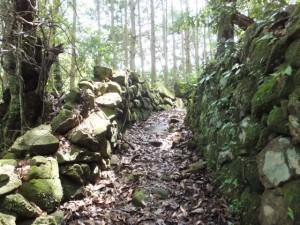 猪垣(「しんこんばし」から山の神へ)
