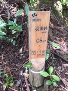 「伊勢路08 羽後峠 06/09 」道標付近