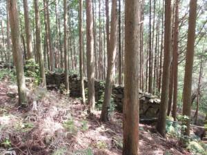 猪垣(羽後峠からJR賀田駅へ)
