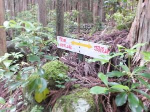 「賀田羽根五輪、羽後峠」の道標