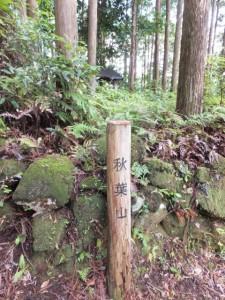 秋葉山の木柱、「伊勢路08 羽後峠 08/09 」道標の先