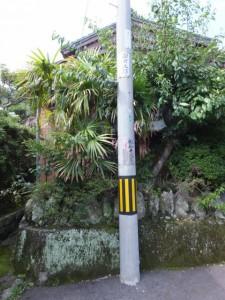津波の高さを示す掲示がある電柱