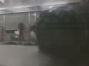 JR紀勢本線 九鬼駅~大曽根浦駅の車内の風景
