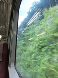 JR紀勢本線 の車窓