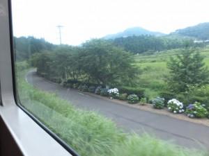 熊野古道伊勢路図絵を片手に#3(馬瀬から上里まで)のあじさいの道