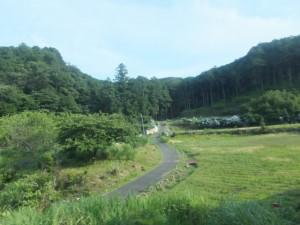 JR紀勢本線 海野踏切付近の風景