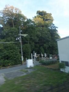 JR紀勢本線の車窓から望む佐那神社の社叢