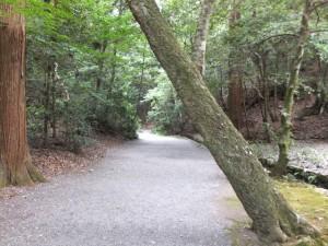 下御井神社への参道(外宮)