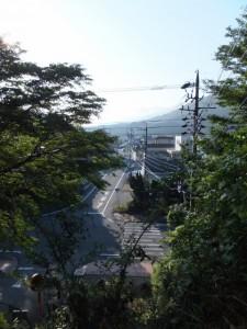 坂道の上から遠望する中村歩道橋