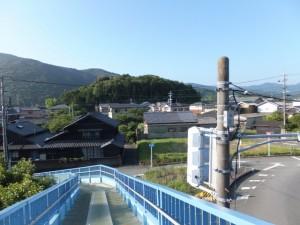 国道23号 中村歩道橋から望む宇治山田神社の社叢