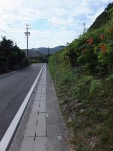 賀田港と国道311号の分岐から飛鳥神社方向へ