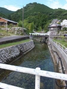 逢神川の上流側