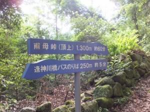 「逢神川橋バスのりば 250m 約5分、甫母峠(頂上) 1,300m 約60分」の道標