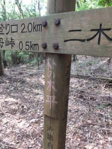 道標に手書きされた「朴の木平」、「ホオノキ平」の文字(曽根次郎坂太郎坂)