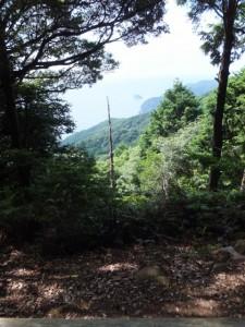 楯見ヶ丘(曽根次郎坂太郎坂)から望む笹野島方向