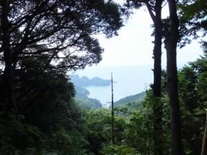 楯見ヶ丘(曽根次郎坂太郎坂)から望む楯ヶ崎方向