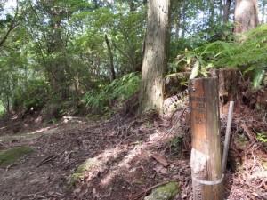 「伊勢路09 曽根次郎坂太郎坂 33/39 」道標付近