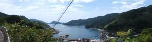 国道311号から見下ろした二木島の風景