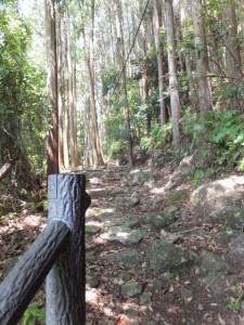 二木島峠 逢神坂峠登り口付近