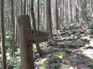 「二木島峠 600m」の道標
