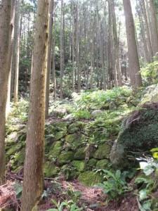 二木島峠逢神坂峠道