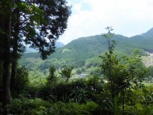 新鹿登り口への下りの途中、右手に見える風景(二木島峠逢神坂峠道)