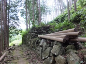 「逢神坂峠 1.5km、新鹿側登り口 100m」の道標付近