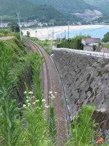 トンネル上の道路から望むJR紀勢本線と新鹿海水浴場