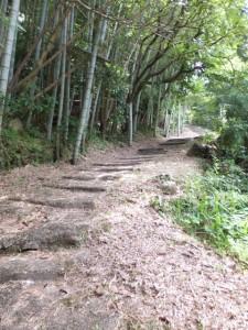 「波田須・大吹峠、新鹿R311」の道標から波田須方向へ