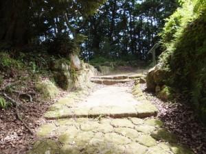 波田須の道