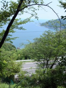 波田須の道から望む新鹿湾